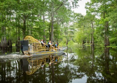 Louisiana-Atchafalaya-Basin-Airboat-Tour (1)