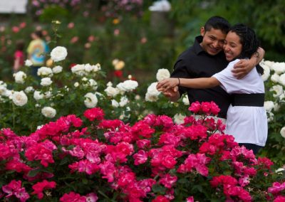 Portland rosen test garden3601