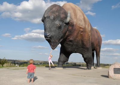 World_s Largest Buffalo Statue_Jamestown
