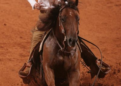 photos_AQHA_Reining_in_OKC